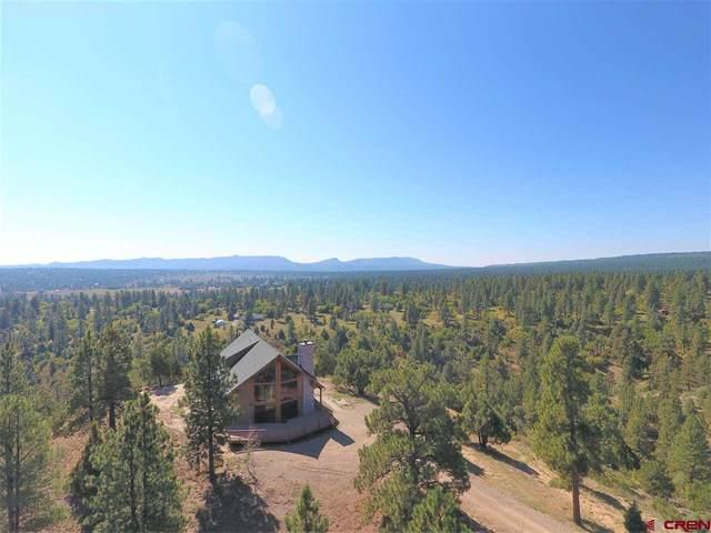 1495 Cherry Gulch Road, Durango, CO 81301 (MLS #780411) :: Durango Mountain Realty