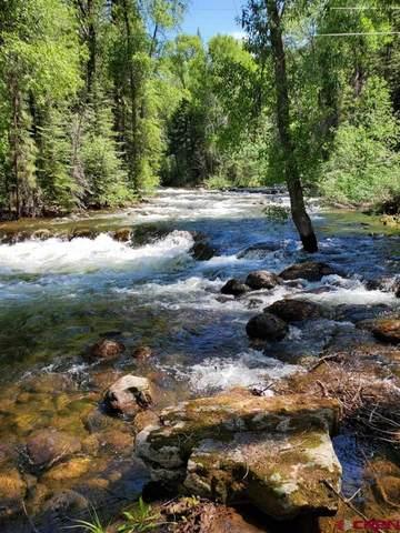 14111 Cr 240, Durango, CO 81301 (MLS #780502) :: Durango Mountain Realty