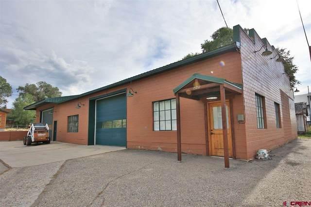 15757 57 1/2 Road, Collbran, CO 81624 (MLS #780510) :: The Dawn Howe Group | Keller Williams Colorado West Realty