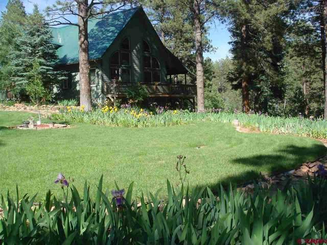 41 Perro Place, Durango, CO 81301 (MLS #780524) :: Durango Mountain Realty
