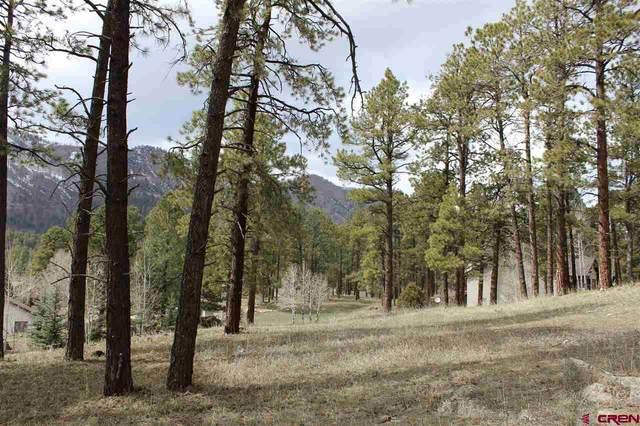 232 Hogan Circle, Durango, CO 81301 (MLS #780537) :: Durango Mountain Realty