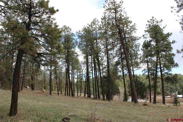 252 Hogan Circle, Durango, CO 81301 (MLS #780541) :: Durango Mountain Realty