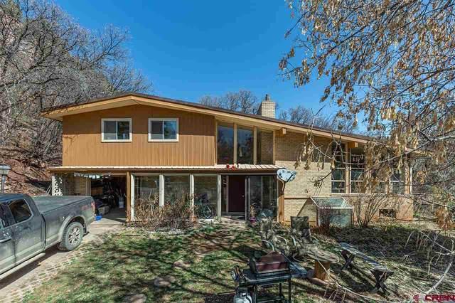 4459 County Road 203, Durango, CO 81301 (MLS #780600) :: Durango Mountain Realty