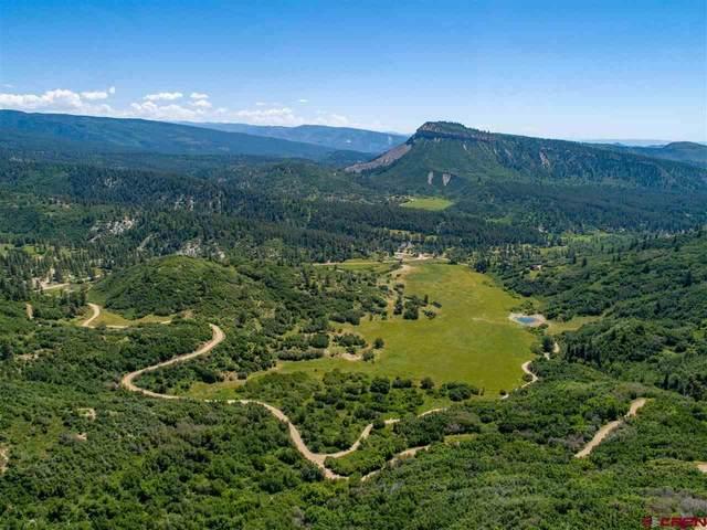 TBD Destination Ranch Road, Durango, CO 81301 (MLS #780641) :: Durango Mountain Realty