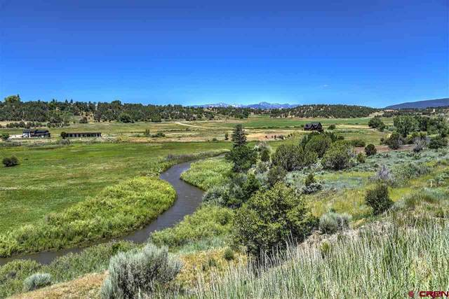 231 Bareback Lane, Durango, CO 81303 (MLS #780781) :: Durango Mountain Realty