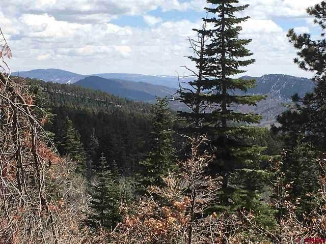 99 Sandlewood Circle, Durango, CO 81301 (MLS #780790) :: Durango Mountain Realty