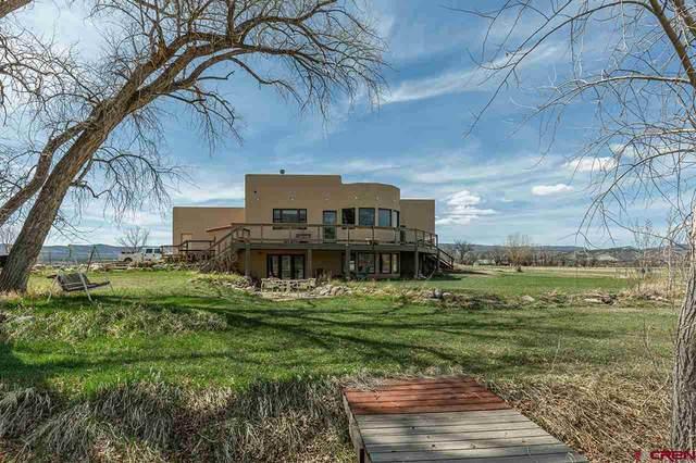 1054 County Road 215, Durango, CO 81303 (MLS #780803) :: Durango Mountain Realty