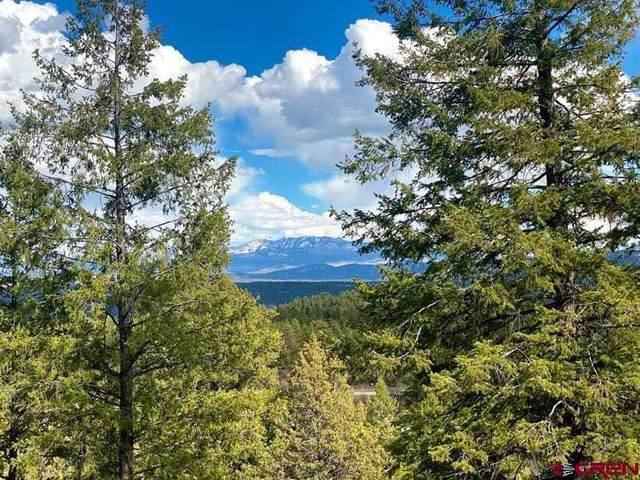 352 Blanca Place, Pagosa Springs, CO 81147 (MLS #780818) :: The Howe Group   Keller Williams Colorado West Realty