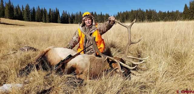 TBD Tbd, Gunnison, CO 81230 (MLS #780965) :: The Howe Group | Keller Williams Colorado West Realty