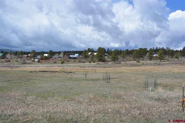 130 Dylan Drive, Pagosa Springs, CO 81147 (MLS #781047) :: The Howe Group | Keller Williams Colorado West Realty