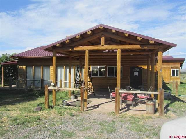 15223 59 1/2 Road, Collbran, CO 81624 (MLS #781067) :: The Dawn Howe Group | Keller Williams Colorado West Realty