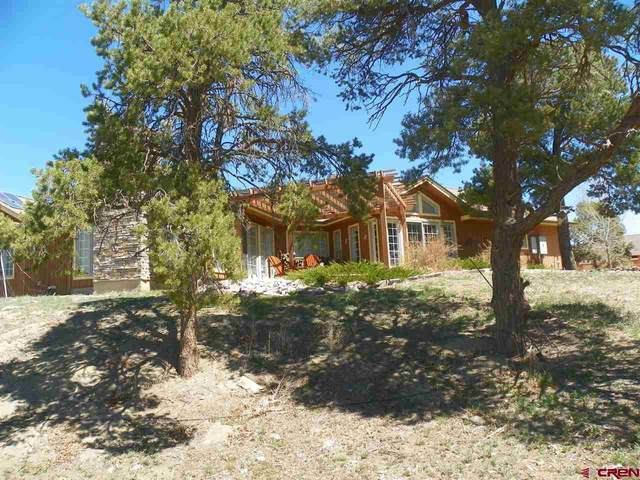 2628 Cr 330, Ignacio, CO 81137 (MLS #781080) :: The Howe Group | Keller Williams Colorado West Realty