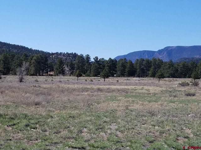 30903 W Highway 160, South Fork, CO 81154 (MLS #781108) :: The Howe Group   Keller Williams Colorado West Realty