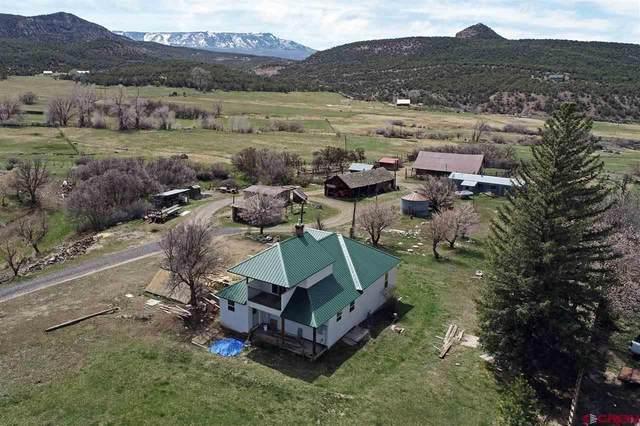 51657 Ke Road, Mesa, CO 81643 (MLS #781141) :: The Dawn Howe Group | Keller Williams Colorado West Realty