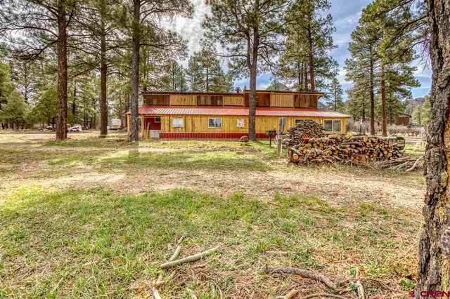 91 Blue Jay Drive, Pagosa Springs, CO 81147 (MLS #781168) :: The Howe Group | Keller Williams Colorado West Realty