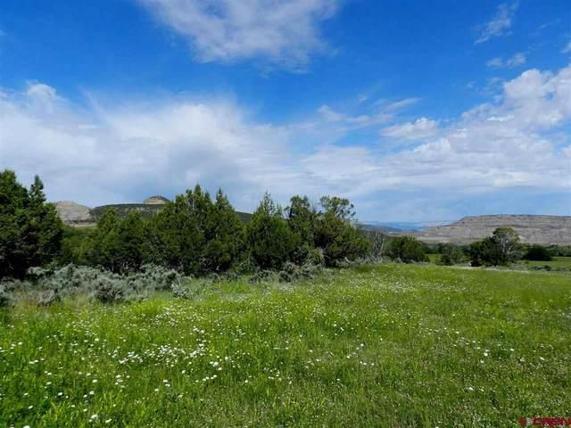 51894 Ke Road, Mesa, CO 81624 (MLS #781169) :: The Dawn Howe Group | Keller Williams Colorado West Realty