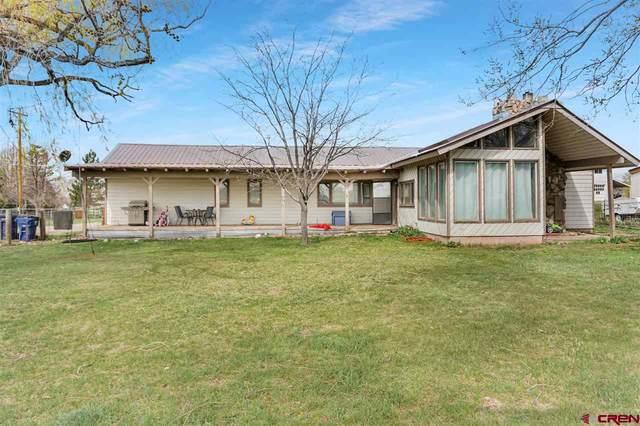 695 Highway 172, Durango, CO 81301 (MLS #781172) :: Durango Mountain Realty