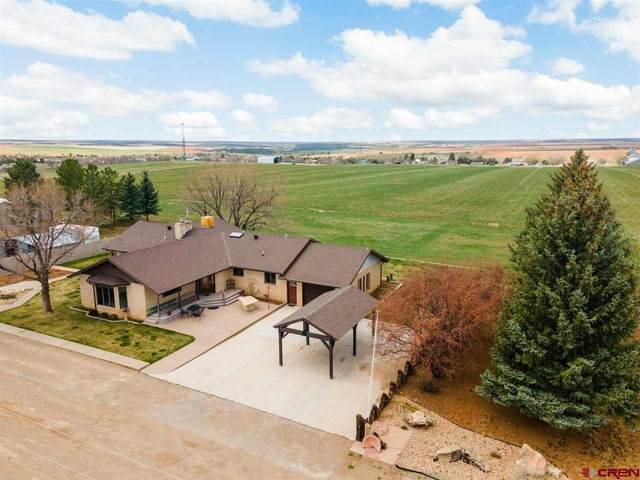 16189 Road 13.3, Cahone, CO 81320 (MLS #781240) :: The Dawn Howe Group | Keller Williams Colorado West Realty
