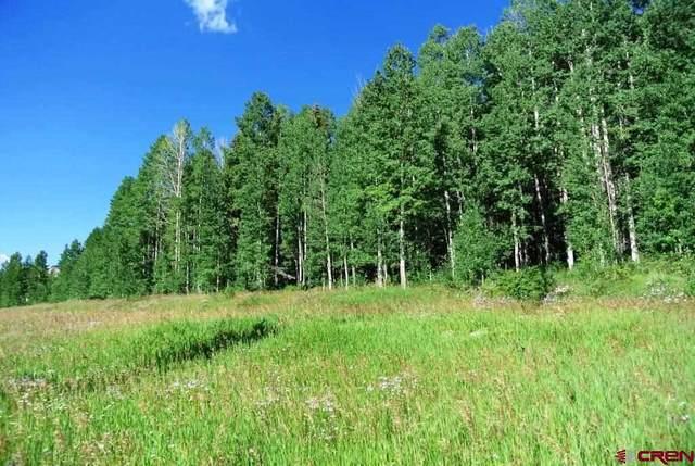 TBD Hwy 550 N, Durango, CO 81301 (MLS #781255) :: Durango Mountain Realty