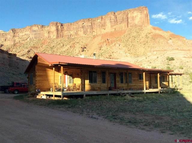 1060 4 2/10 Road, Gateway, CO 81522 (MLS #781310) :: The Dawn Howe Group | Keller Williams Colorado West Realty