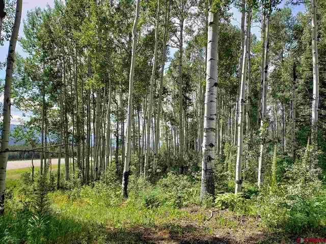 81 Scotch Creek Drive, Durango, CO 81301 (MLS #781401) :: Durango Mountain Realty