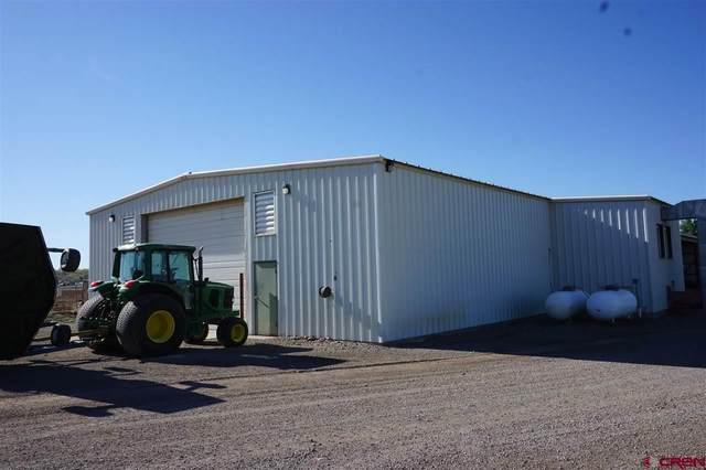 57518 Ida Road, Montrose, CO 81403 (MLS #781436) :: The Howe Group | Keller Williams Colorado West Realty