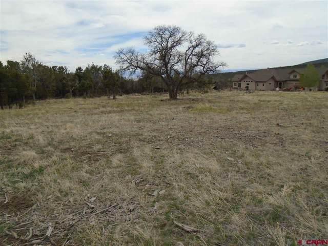 TBD Wild Turkey Lane, Cedaredge, CO 81413 (MLS #781505) :: The Howe Group   Keller Williams Colorado West Realty