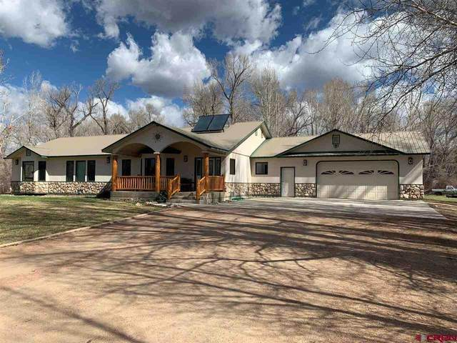 303 Rainbow Acres Lane, Gunnison, CO 81230 (MLS #781550) :: The Dawn Howe Group | Keller Williams Colorado West Realty