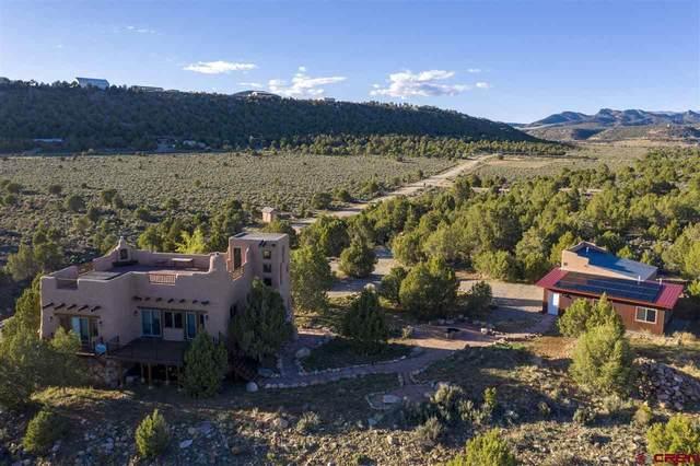 233 Kiva Road, Durango, CO 81303 (MLS #781560) :: Durango Mountain Realty