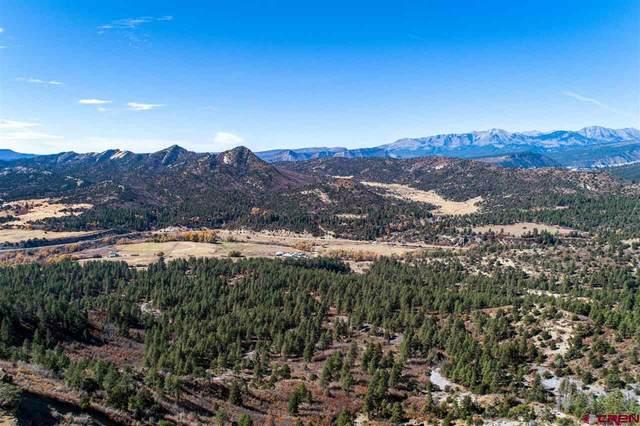 TBD Vista Grande Way, Durango, CO 81301 (MLS #781580) :: Durango Mountain Realty