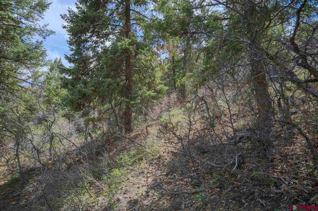 430 Pike Drive, Pagosa Springs, CO 81147 (MLS #781632) :: The Howe Group   Keller Williams Colorado West Realty