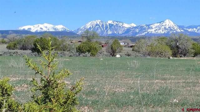 Lot 7 Pine Ridge Road, Cedaredge, CO 81413 (MLS #781655) :: The Dawn Howe Group | Keller Williams Colorado West Realty