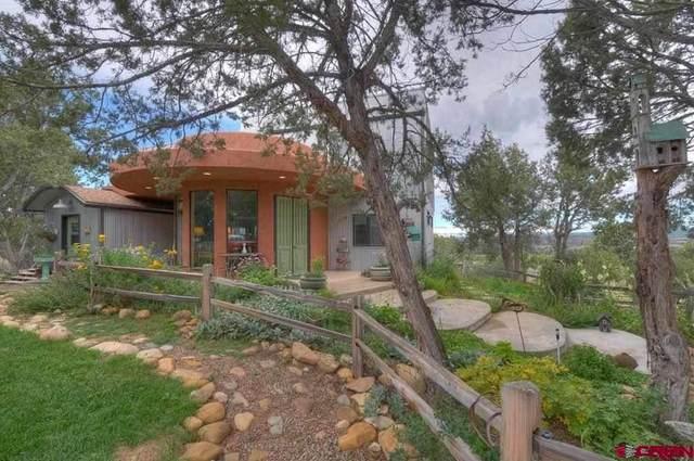 8370 Road 41, Mancos, CO 81328 (MLS #781678) :: The Howe Group | Keller Williams Colorado West Realty