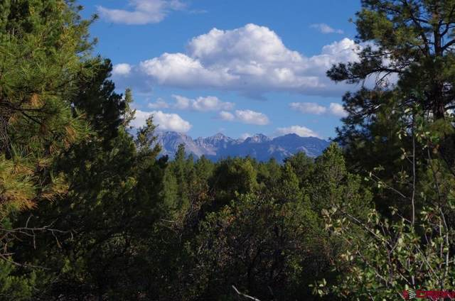 TBD (Lot 6) Big Canyon Point, Ridgway, CO 81432 (MLS #781701) :: The Howe Group | Keller Williams Colorado West Realty