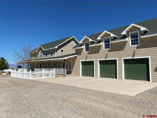 1780 1300 Road, Delta, CO 81416 (MLS #781735) :: The Dawn Howe Group | Keller Williams Colorado West Realty