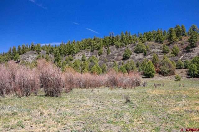 1578 Harvard Avenue, Pagosa Springs, CO 81147 (MLS #781755) :: The Howe Group   Keller Williams Colorado West Realty
