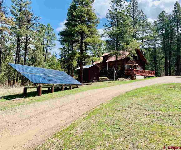 117 Maple Glen Place, Pagosa Springs, CO 81147 (MLS #781757) :: The Howe Group   Keller Williams Colorado West Realty