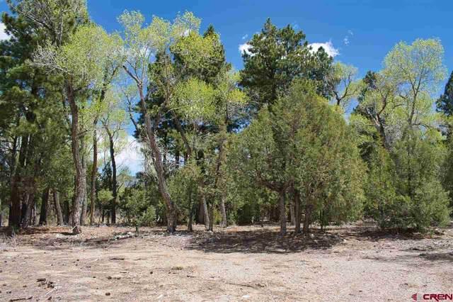 14 Cottonwood Loop, Mosca, CO 81146 (MLS #781771) :: The Howe Group | Keller Williams Colorado West Realty