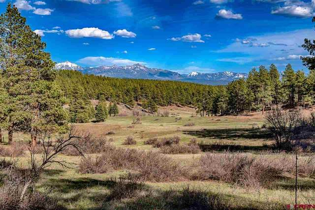 Lot_32 Piney Place, Pagosa Springs, CO 81147 (MLS #781791) :: The Howe Group   Keller Williams Colorado West Realty