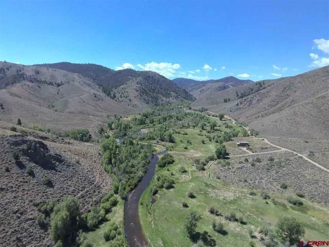 540 Cebolla River Road, Powderhorn, CO 81243 (MLS #781802) :: The Dawn Howe Group | Keller Williams Colorado West Realty