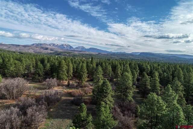 303 Vaquero, Durango, CO 81303 (MLS #781844) :: The Dawn Howe Group | Keller Williams Colorado West Realty