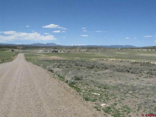 10662 Hwy 172 Highway, Ignacio, CO 81137 (MLS #781854) :: The Dawn Howe Group | Keller Williams Colorado West Realty
