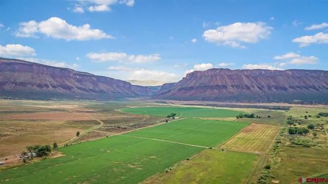9762 X Road, Bedrock, CO 81411 (MLS #781858) :: The Dawn Howe Group | Keller Williams Colorado West Realty