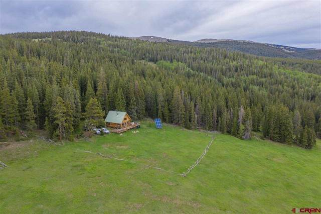 4080 Chicago Park Road, Pitkin, CO 81241 (MLS #781909) :: The Howe Group   Keller Williams Colorado West Realty