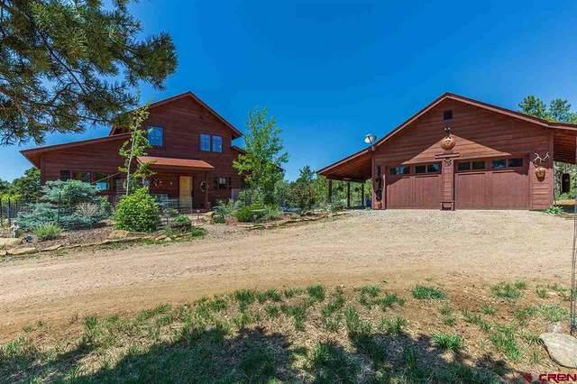 179 D Bar K Drive, Durango, CO 81301 (MLS #781934) :: Durango Mountain Realty