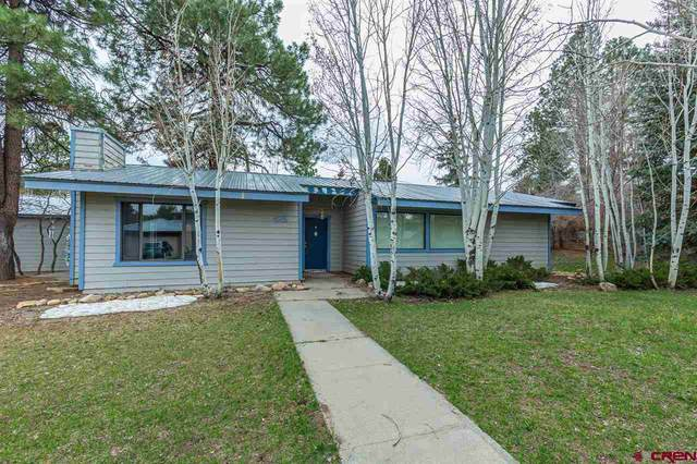 425 Willow Drive, Durango, CO 81301 (MLS #781978) :: Durango Mountain Realty