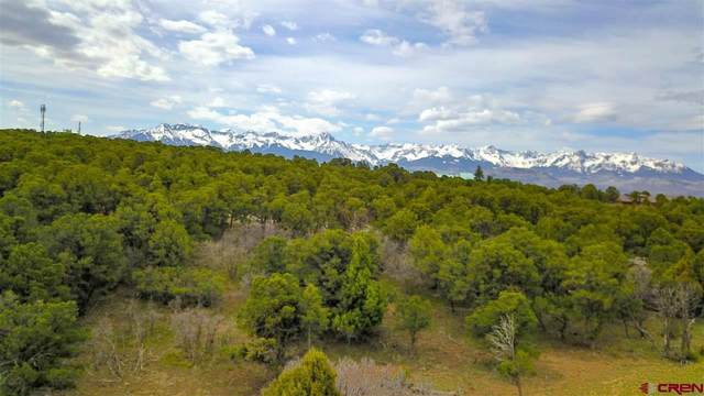 196 S Tower Road, Ridgway, CO 81432 (MLS #781999) :: The Dawn Howe Group | Keller Williams Colorado West Realty