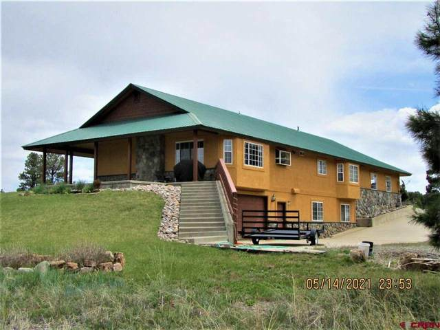 296 Woodsman Drive, Pagosa Springs, CO 81147 (MLS #782003) :: The Dawn Howe Group | Keller Williams Colorado West Realty