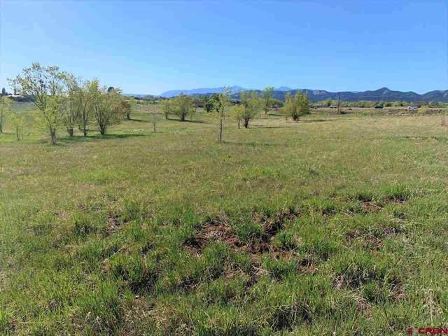 118 Mesa Heights Drive, Durango, CO 81303 (MLS #782004) :: The Dawn Howe Group | Keller Williams Colorado West Realty