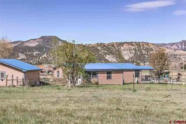 838 Cr 216, Durango, CO 81303 (MLS #782088) :: Durango Mountain Realty